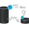 Amazon Echo と Alexa の違い とは